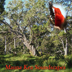 CD Cover Mauna Kea soundscapes